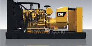 CAT Series-watermarked